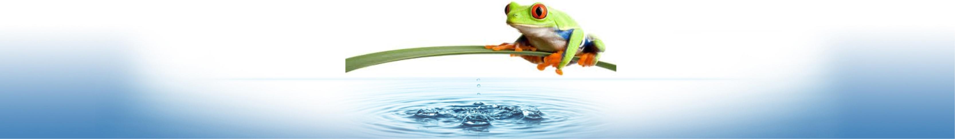 apt aqua pure water frog image