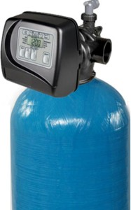 water filter with backwash valve